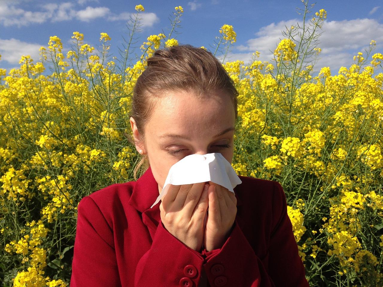 allergy 1738191_1280 1